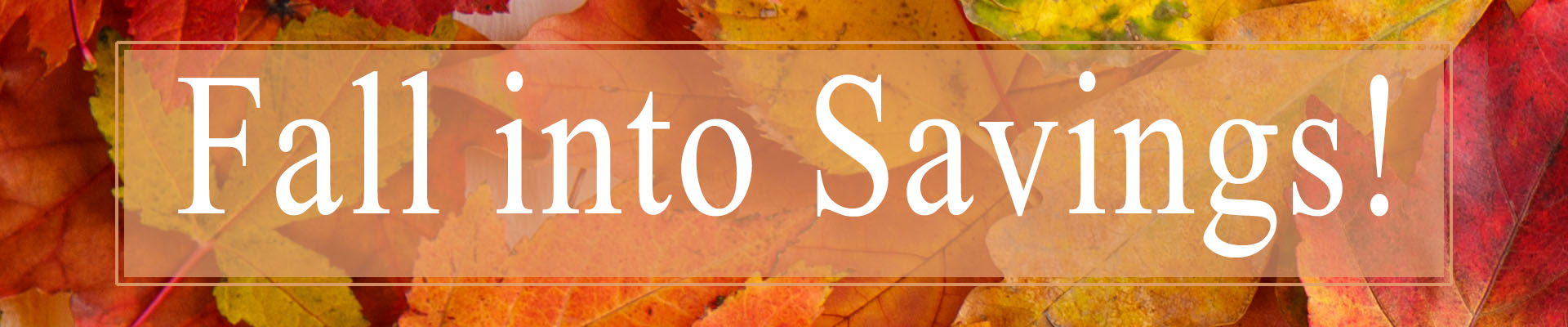 TACS Fall Discount Offer Banner